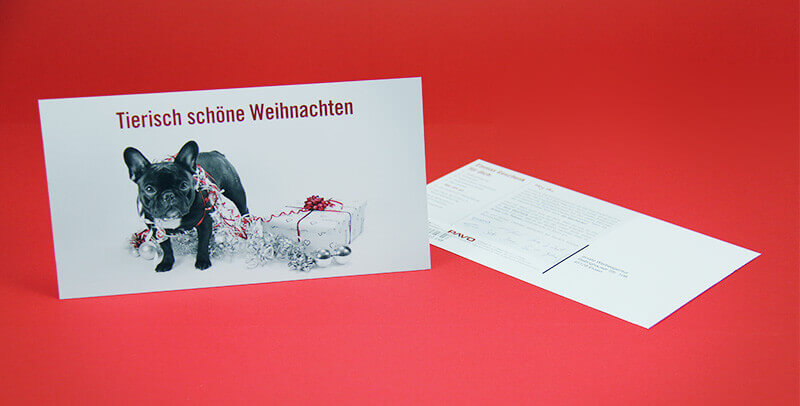PAVO Meisterfriseure Postkarte